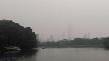 The 'view' on a polluted winter day